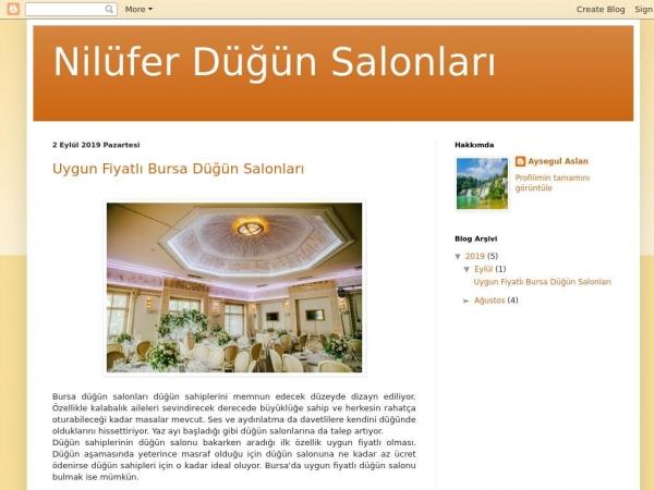 niluferdugunsalonu.blogspot.com